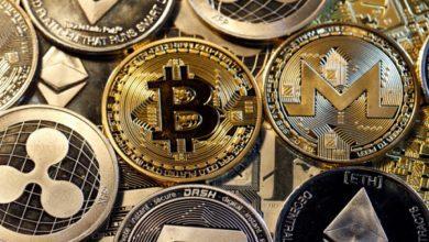 تصویر از معامله گران مراقب باشند افزایش کلاه برداری در رمزارزها