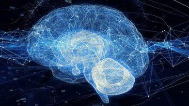 تصویر از مطالعات زوال عقل به کمک هوش مصنوعی