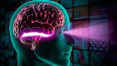 تصویر از شبکه عصبی سیال سازگار تحولی عظیم در پردازش اطلاعات